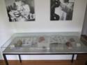 Exotik über dem Nierentisch - Stadtmuseum Einbeck Goldsc26