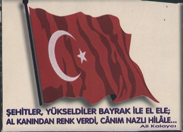 تركيا Albayr10