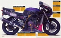 Kawasaki ZXR 750 Zxr_l_10