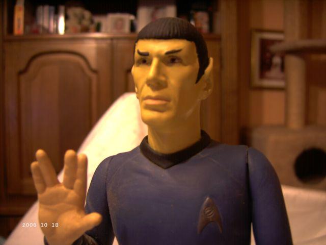 Mr. Spock und Cptn. Kirk - AMT/ERTL 1/6 Spock210