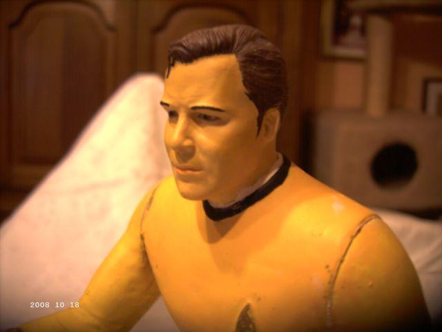 Mr. Spock und Cptn. Kirk - AMT/ERTL 1/6 Spock410