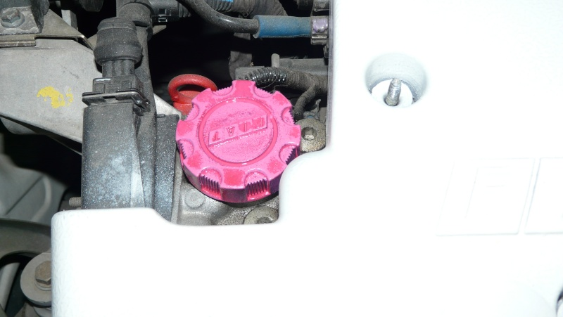 notre show car (fiat bravo) P1060211