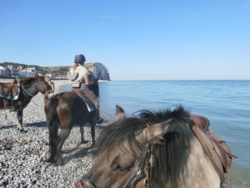 Rallier la mer depuis les Yvelines - Page 2 P9050118