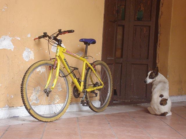Bike Fun point 28931910