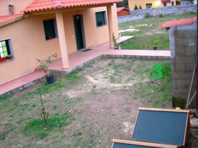 Nuestro proyecto de jardín (ahora sí, con fotos) 310