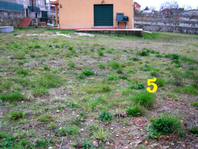 Nuestro proyecto de jardín (ahora sí, con fotos) 510