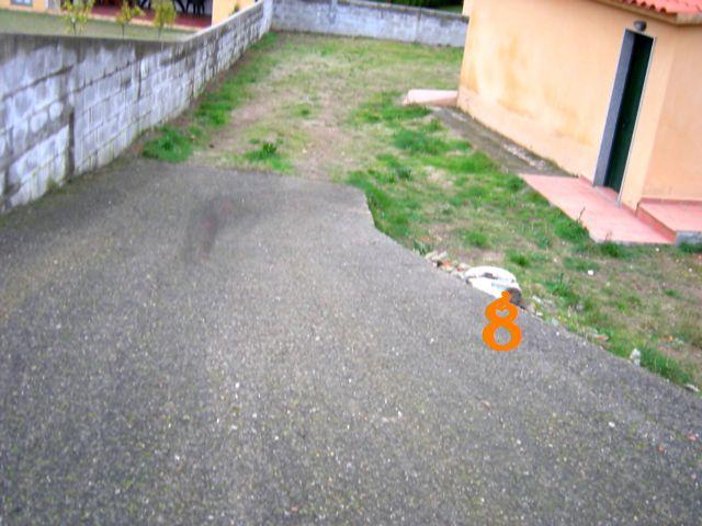 Nuestro proyecto de jardín (ahora sí, con fotos) 810