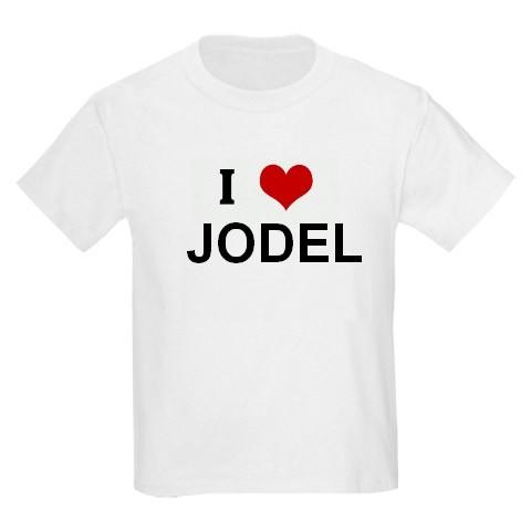 Naissance du BB Jodel Test110