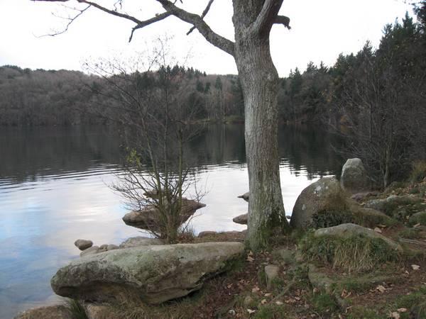 Le Gour de Tazenat (Auvergne) Gourde29