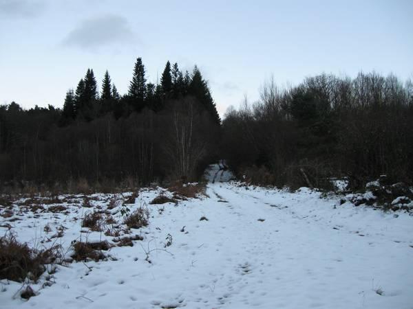 Le Gour de Tazenat (Auvergne) Premie11