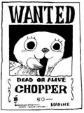 ~ Wanted ~ Choppe10