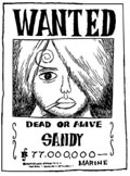 ~ Wanted ~ Sandyw10