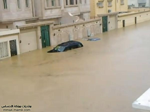 أمطار وسيول جدة ـ الأربعاء 26 يناير 2011 ـ صور 21_bmp10