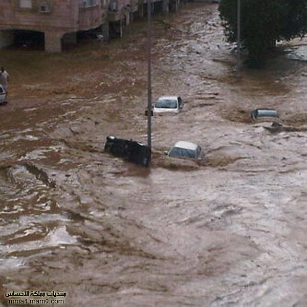 أمطار وسيول جدة ـ الأربعاء 26 يناير 2011 ـ صور 910
