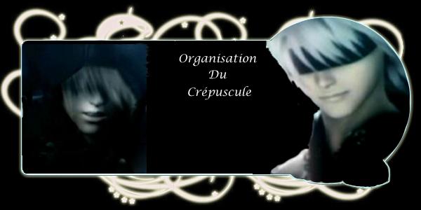l'organisation du crépuscule