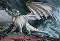 My Dragon Pics 4ewhit11