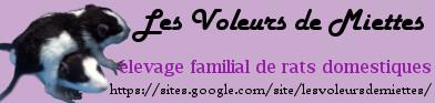 [Site sur les animaux] Les Voleurs de Miettes - Page 5 Bannia10
