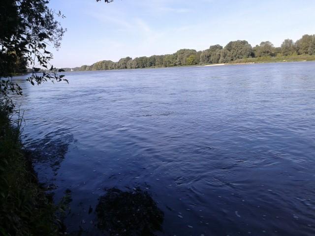 Un petit tour dans le Loiret 10125110