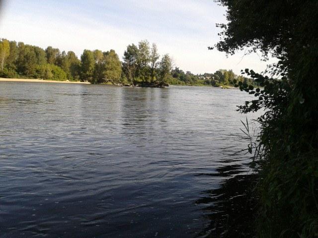 Un petit tour dans le Loiret 11869810