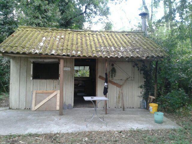 Un petit tour dans le Loiret 56147310