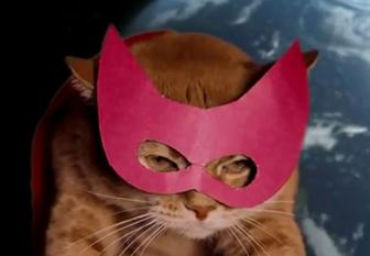 la previsione de lottologo misterioso Cat-ma10