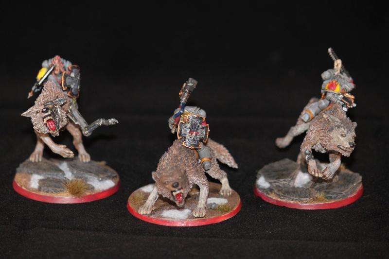 [Boss] Space Wolves de la Grande Compagnie d'Harald Img_8110