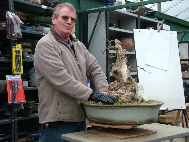 John Pitt at Dragon Bonsai Sunday 10th March Dscf9150