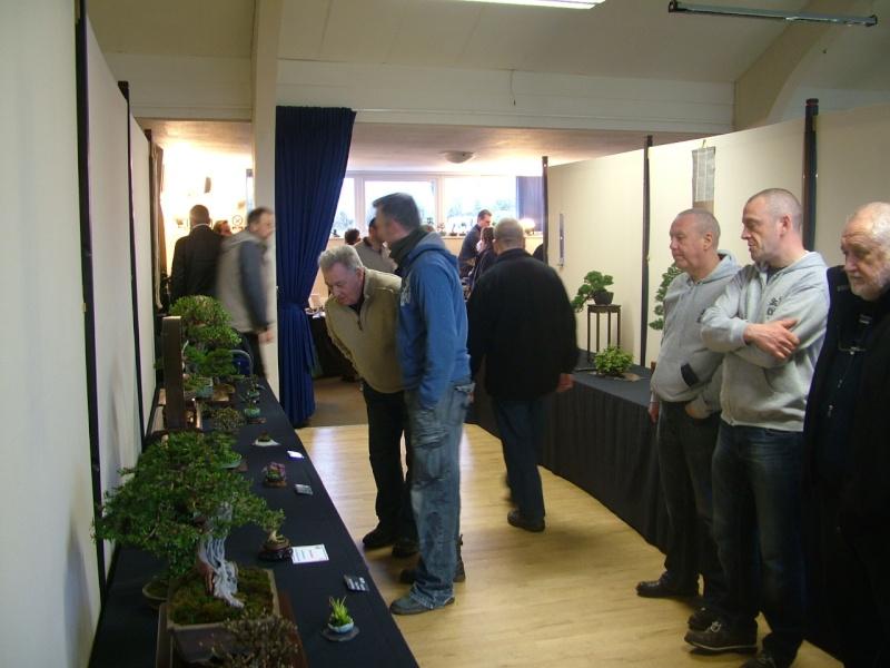 Shohin UK Exhibition 2013 Dscf9521