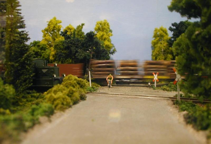 """Bilder der """" Erlebnis Modellbahn """" 2013 in Dresden Dscn0017"""