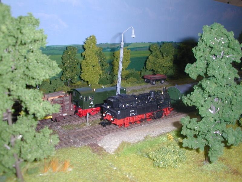 """Bilder der """" Erlebnis Modellbahn """" 2013 in Dresden Dscn0028"""