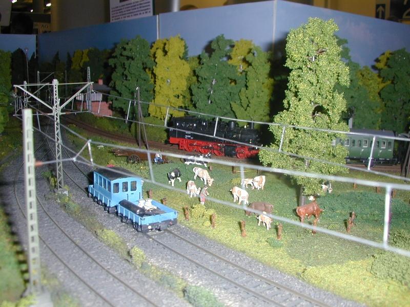 """Bilder der """" Erlebnis Modellbahn """" 2013 in Dresden Dscn0035"""