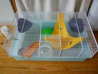 Deux cages (75) P1140314