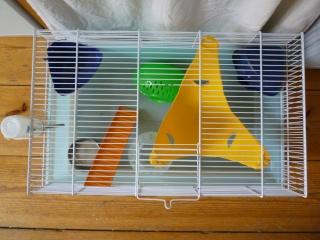 Deux cages (75) P1140315