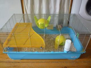 Deux cages (75) P1140511