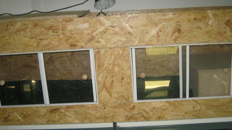 Terrarium en construction pour cet hiver Img_0710