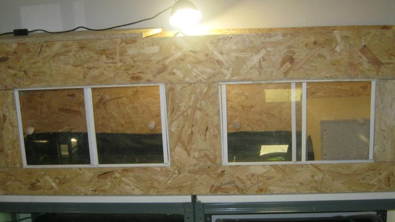 Terrarium en construction pour cet hiver Img_0711