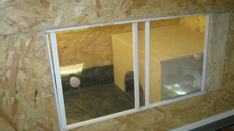 Terrarium en construction pour cet hiver Img_0714
