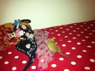 mes crottes Img_2011