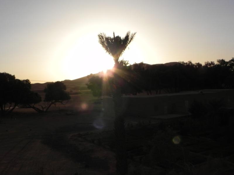 retour maroc 2012 - Page 6 Dscn6622
