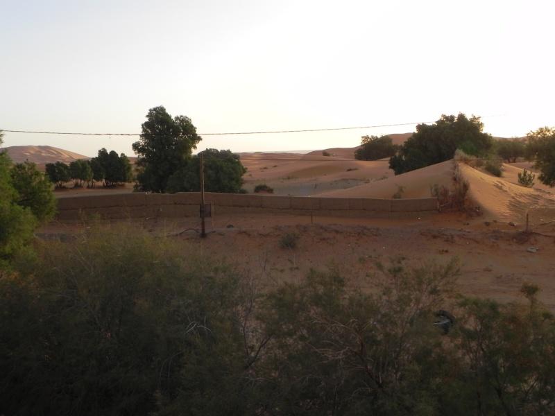 retour maroc 2012 - Page 6 Dscn6623