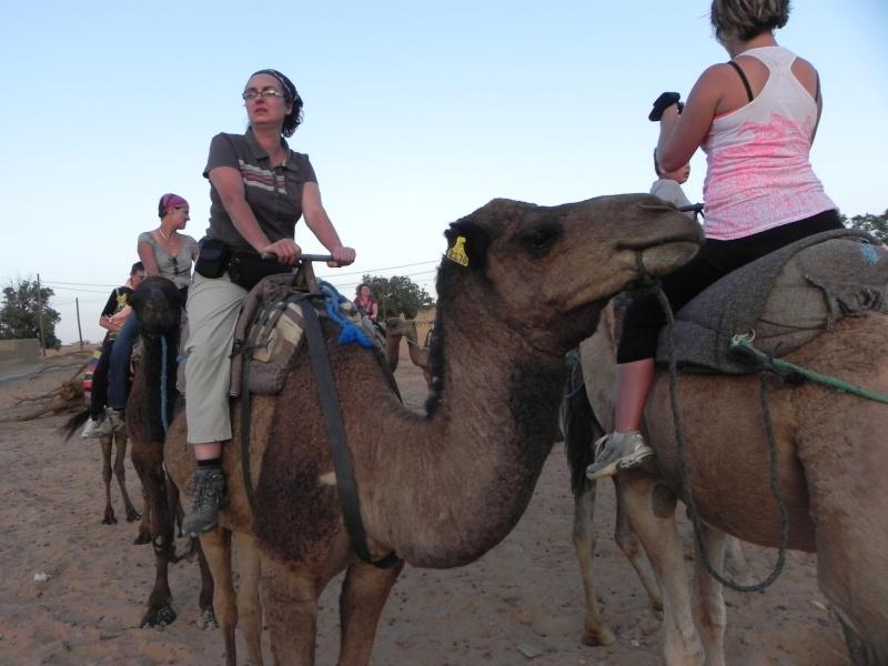 retour maroc 2012 - Page 6 Dscn6739