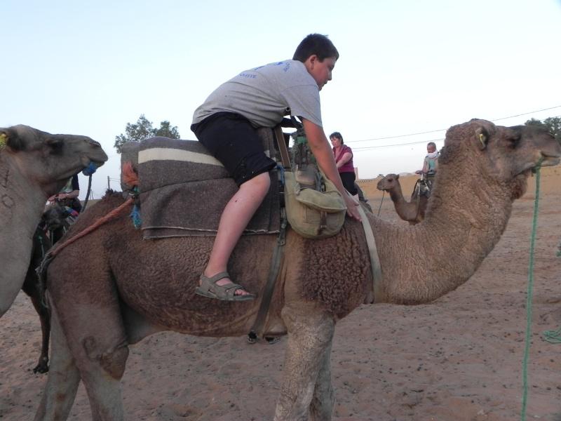 retour maroc 2012 - Page 6 Dscn6740