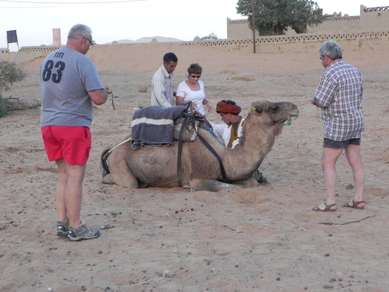 retour maroc 2012 - Page 6 Dscn6748