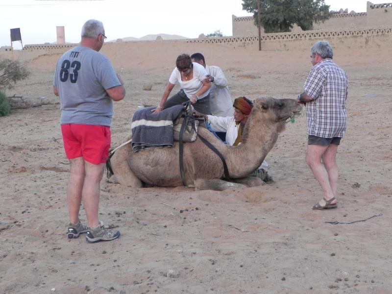 retour maroc 2012 - Page 6 Dscn6749