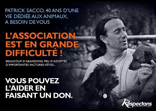 Protection animale - Adoptions Chats chatons, Association Respectons : toutes les semaines (samedi, Paris 10), +  2 fois/mois (Paris 15) Bis11