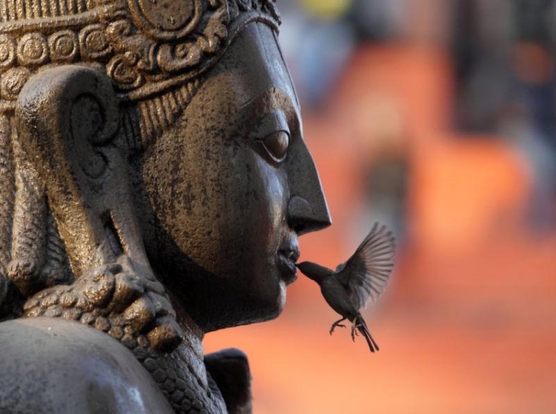 Buddhism 101 - Page 6 Image-10