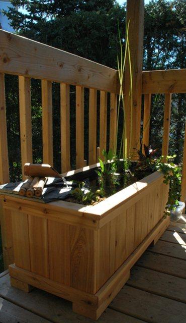 Mini jardin d'eau en contenant W11_ma10