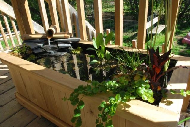 Mini jardin d'eau en contenant W11_ma11