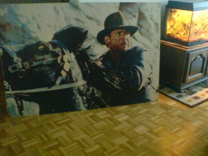 Indiana Jones Dsc02810