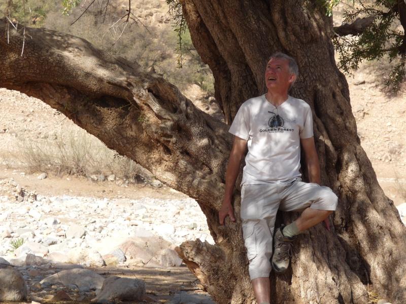 Voyage à Agadir - Page 2 P1070110